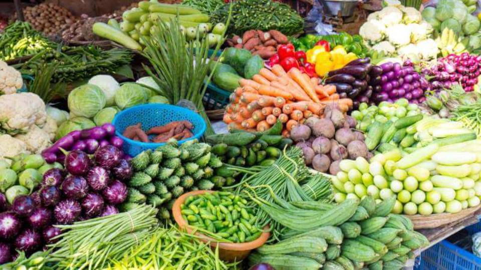 Vegetable Project starts in Tirupur